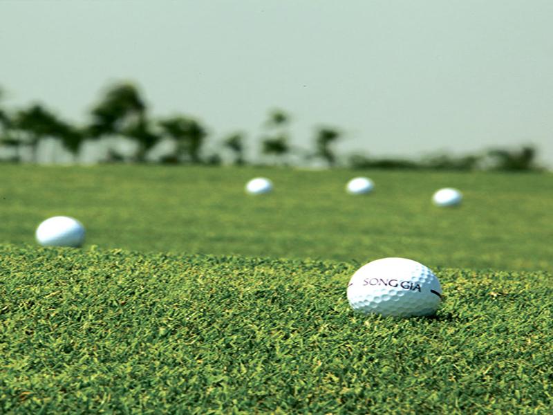 하이퐁 송지아 골프텔 사진 25