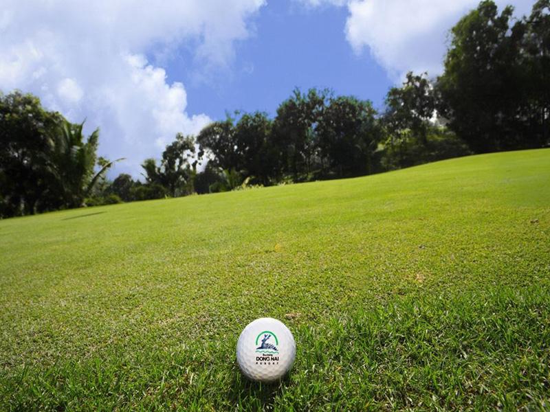동나이 골프텔  사진 9